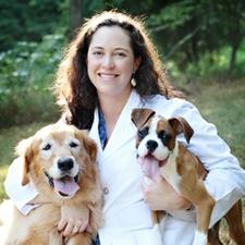 Dr. Ashley Robinson, DVM - Meadowmont Animal Hospital